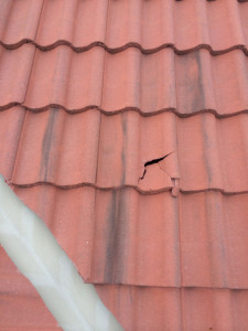 Broken concrete roof tile repair calgary