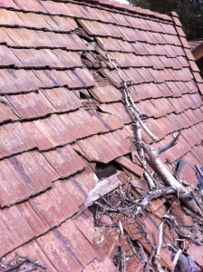 Weather damage roof repair calgary
